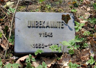 Grab einer Unbekannten auf dem Selbstmörderfriedhof, Berlin